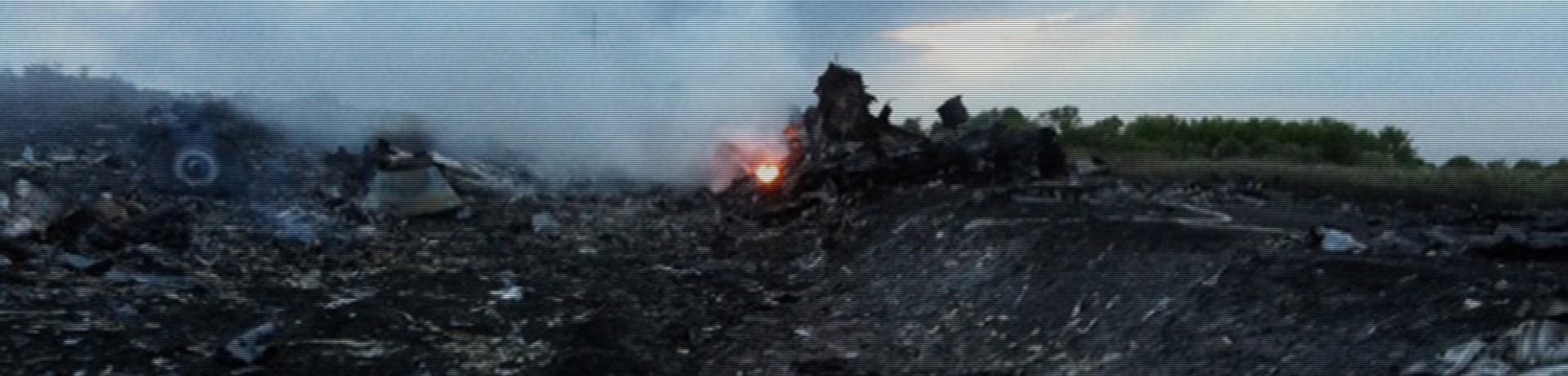 Un avion de la compagnie Malaysia Airlines s'est écrasé en Ukraine le 17 juillet.