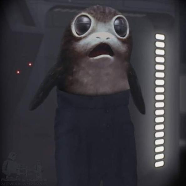 """Cet internaute n'a pas hésité de détourner la photo avec un Porg de """"Star Wars"""""""