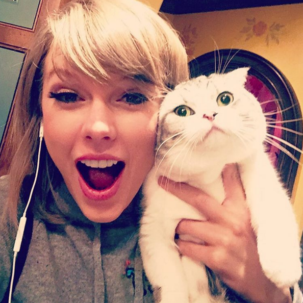 3 - Taylor Swift avec son chat Meredith