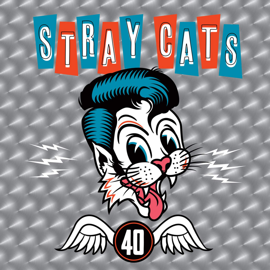 Cat fight (over a dog like me) (live)- STRAY CATS
