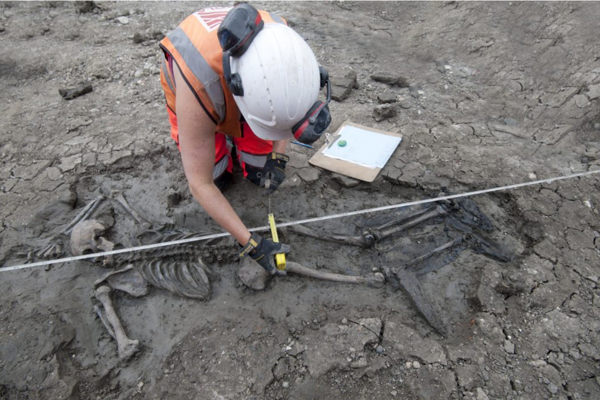 Un squelette humain a été découvert sur un chantier près de la Tamise (Londres)