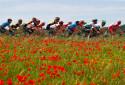 Le peloton du Tour d'Italie le 17 mai 2021
