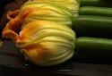 Des fleurs de courgettes (image d'illustration)
