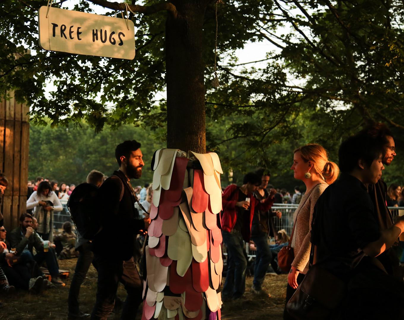 """Des """"tree hugs"""" installés pour faire des câlins aux arbres"""