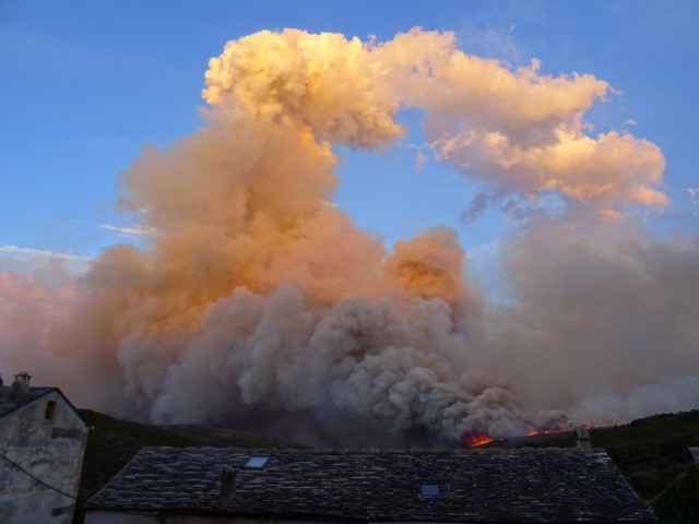 Un incendie ravage Pietracorbara sur la cote est du Cap-Corse, 11 août 2017