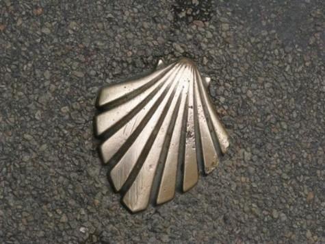 La coquille, symbole des chemins de Saint-Jacques