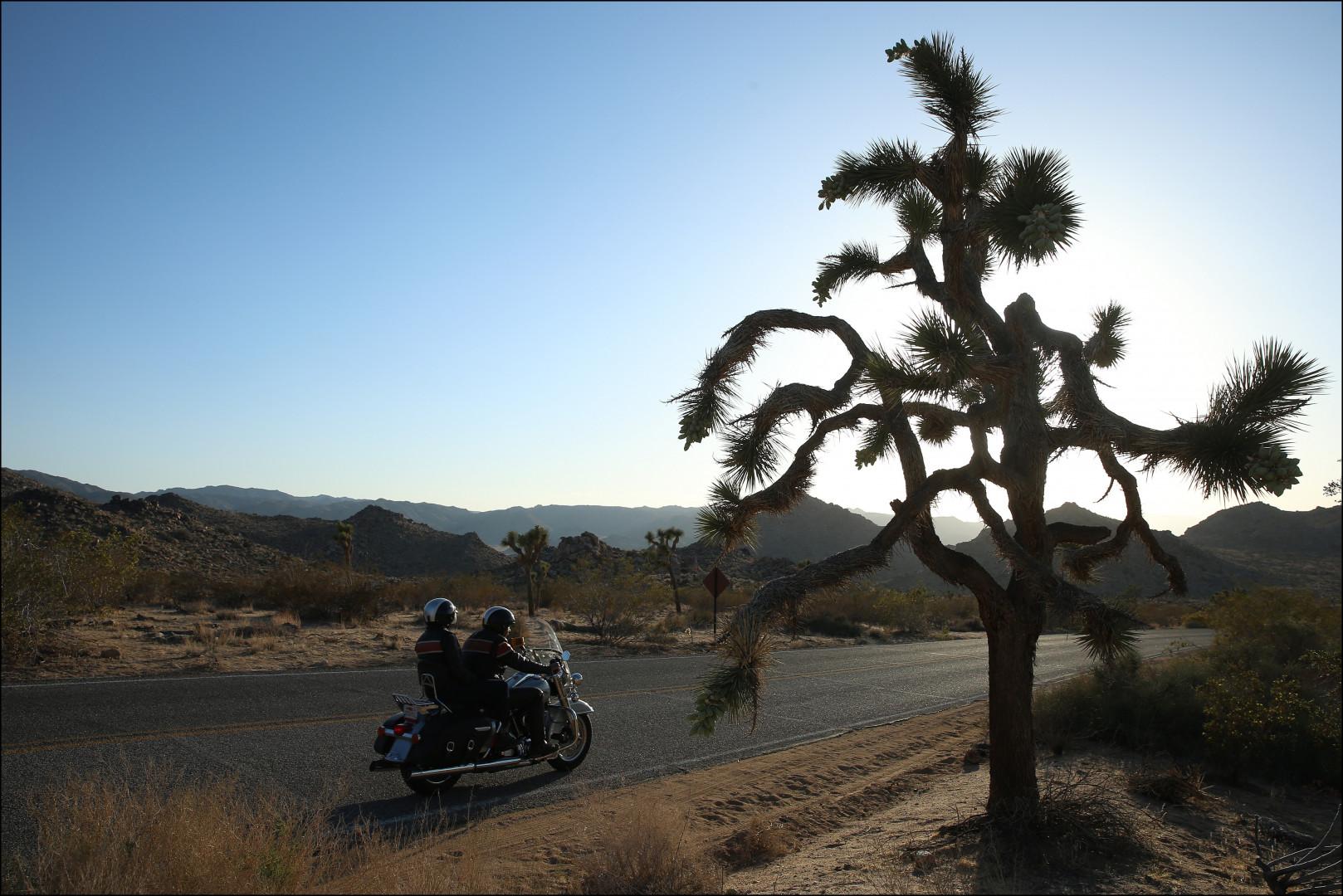 [Edition précédente] Hit Z Road California : California Dreamin'