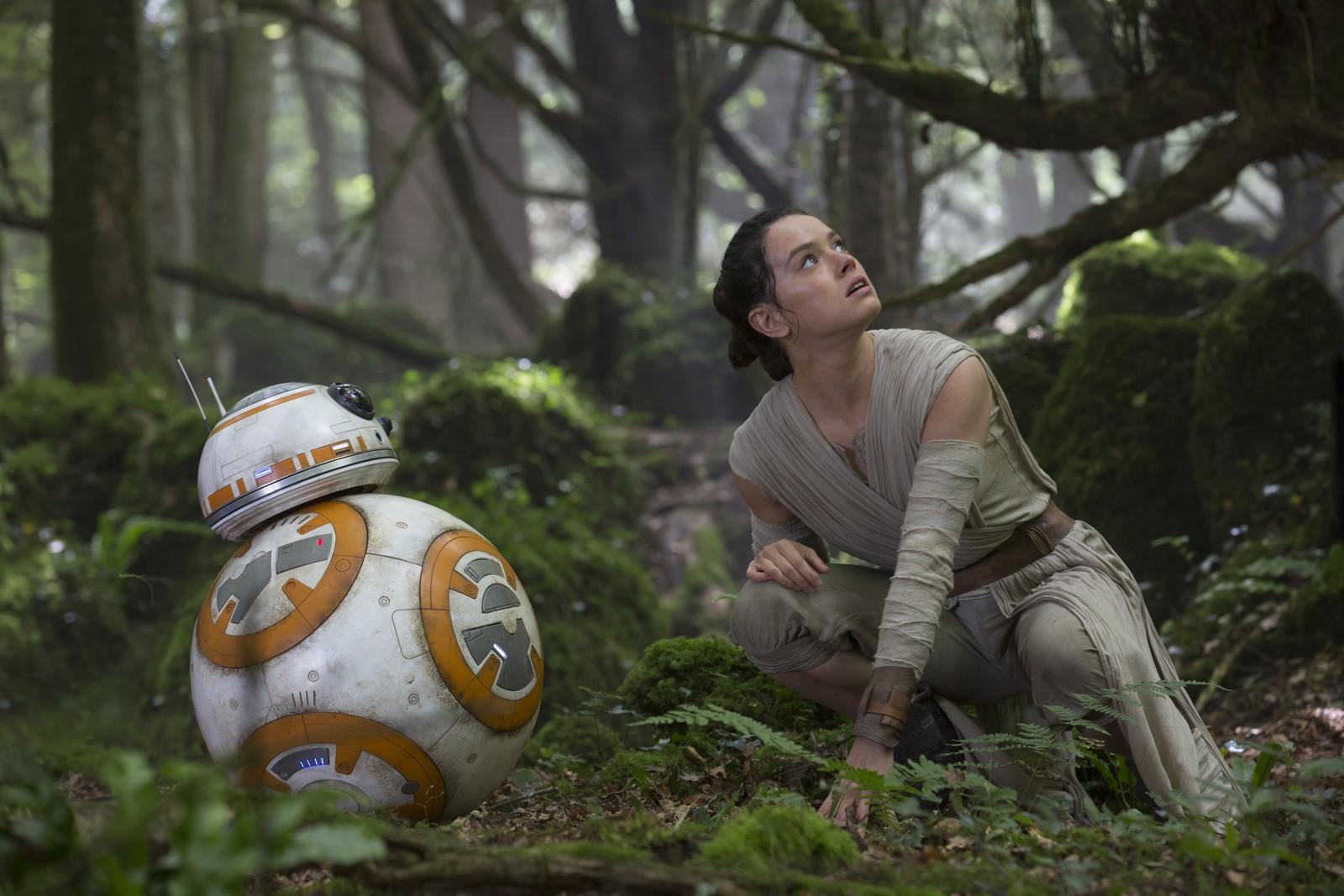 Rey et BB-8 tentent d'échapper au Premier Ordre en se cachant dans la forêt