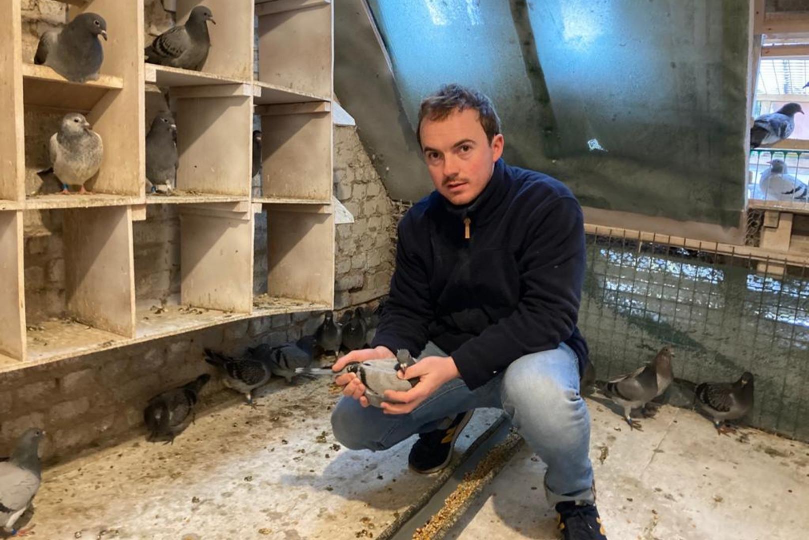 Tanguy Gervois devant ses pigeons dans le grenier de ses parents