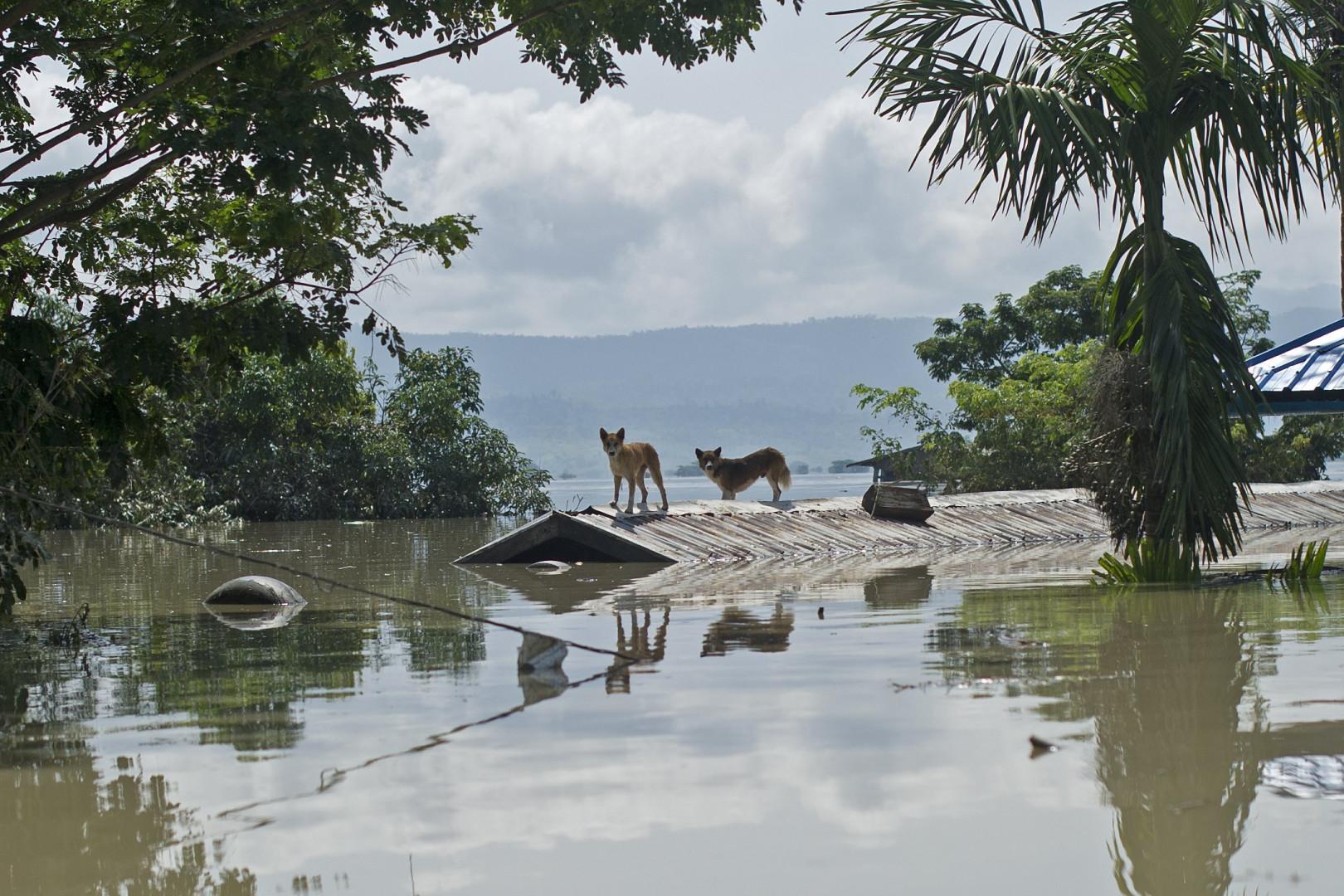 Par endroits, l'eau a atteint le toit des maisons