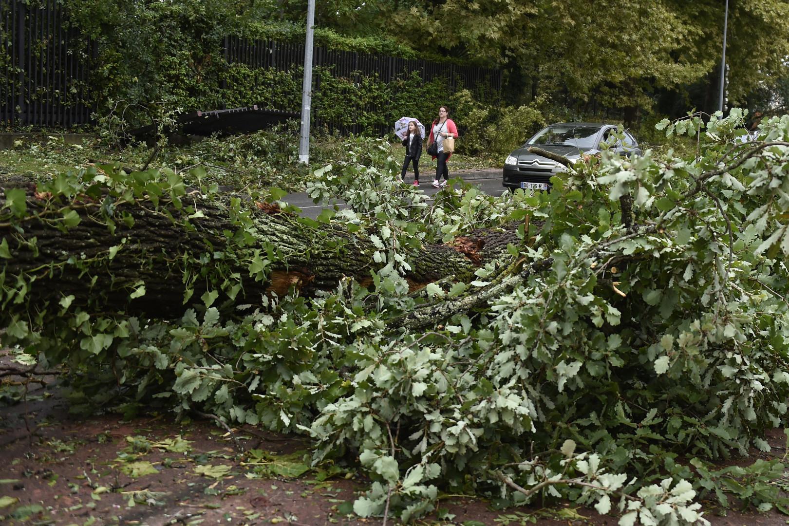 Les orages ont causé de nombreux dégâts à Montauban, le 1er septembre 2015.