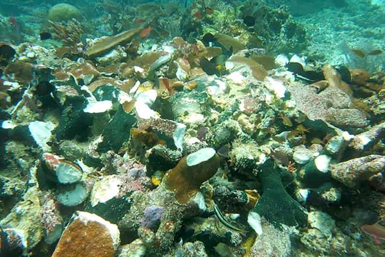 Des coraux endommagés par un navire de croisière à Raja Ampat, dans l'est de l'Indonésie.