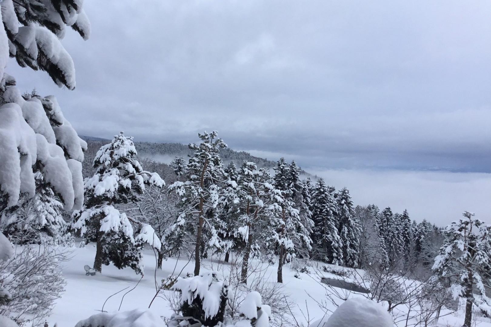 A 1100 m d'altitude à Job (Puy-de-Dôme) lundi 5 février 2018