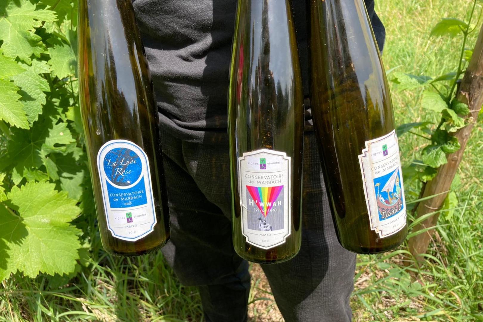 Trois bouteilles de vins produits grâce à Haroon Rahimi