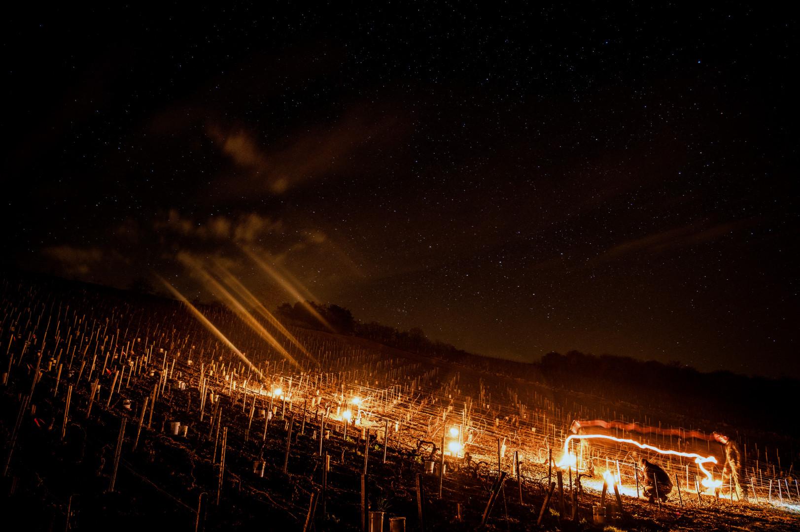 Un viticulteur dans son champ de vignes à Chablis (Yonne) en pleine nuit, les feux allumés, le 7 avril 2021