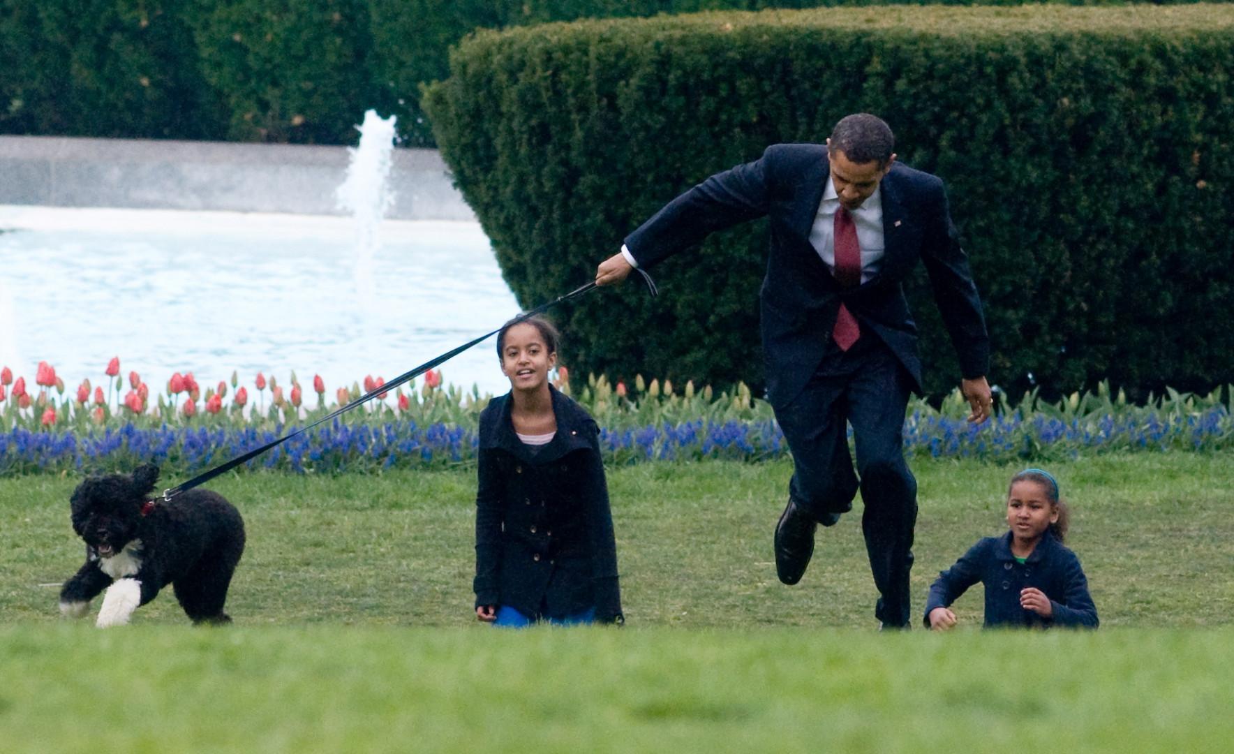La famille Obama ne serait pas la même sans Bo, un adorable chien d'eau portugais que les filles promènent sur les pelouses de la Maison Blanche.