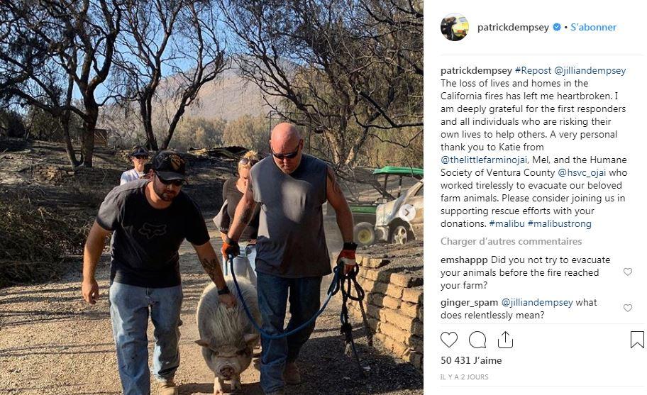 Patrick Dempsey a lui dû évacuer les animaux de sa ferme avec l'aide d'une association