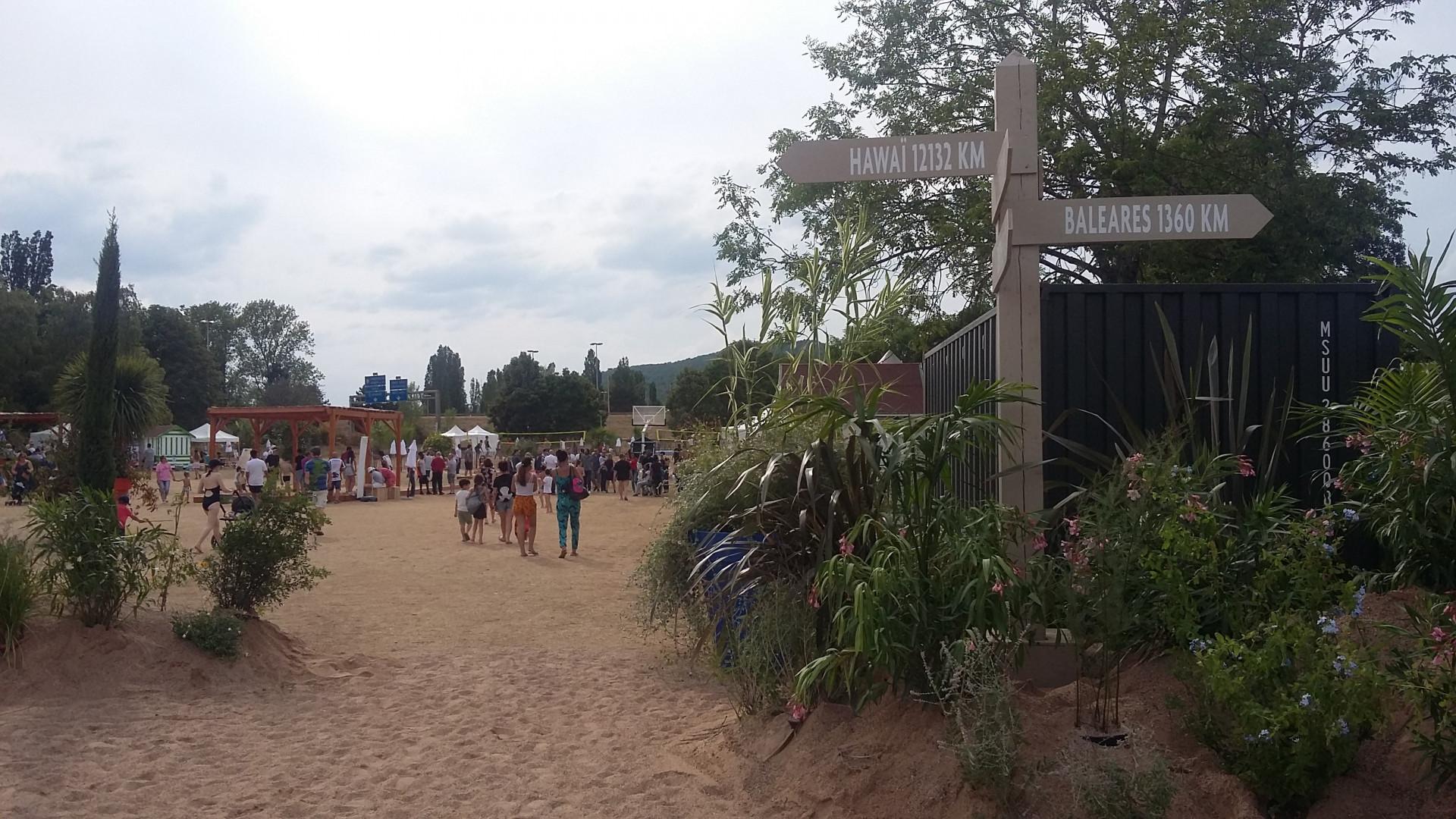 Du sable et de la végétation ont été installés sur le site