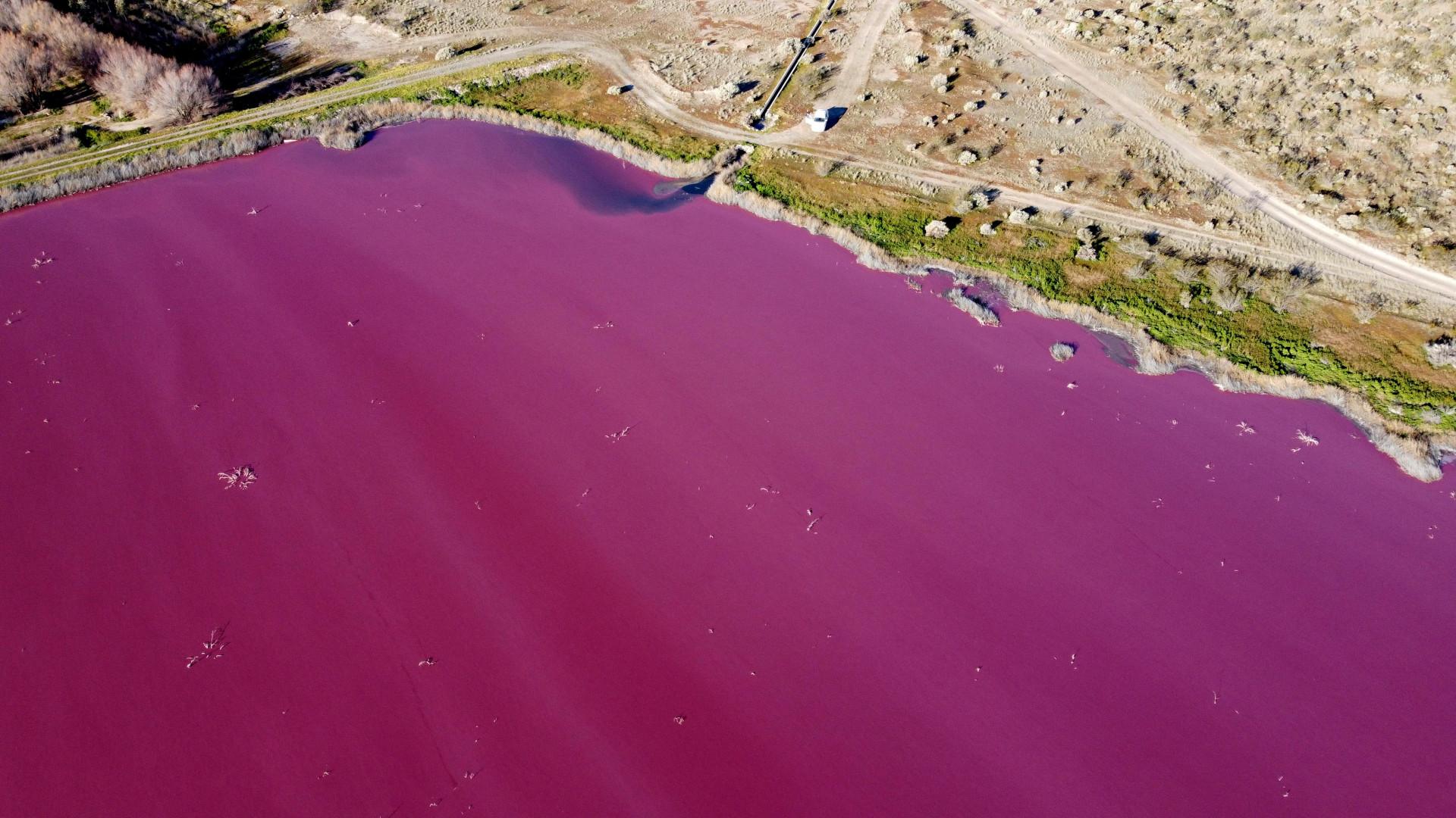 """La couleur rougeâtre ne cause pas de dommages"""", selon une responsable du contrôle environnemental"""