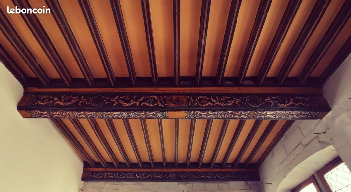 """L'un des fameux """"magnifiques plafonds à la française"""" décrits par le propriétaire"""