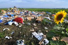 Les débris du vol MH17 de Malaysia Airlines qui s'est écrasé en Ukraine, le 19 juillet 2014.