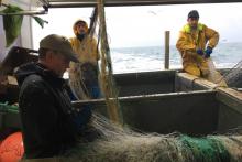 Les pêcheurs de Boulogne-sur-Mer, directement impactés par le Brexit