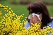 Une femme allergique au pollen (illustration)