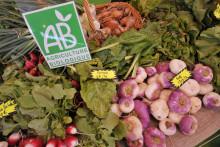 Des légumes issus de l'agriculture biologique (illustration)