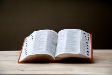 Un dictionnaire (illustration)