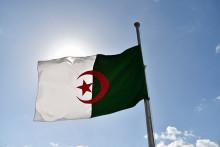 Le drapeau algérien. (Illustration)