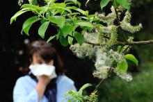 Une femme allergique aux pollens (illustration)