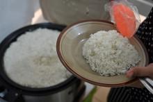 Une assiette de riz. (Illustration)
