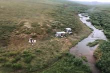 Le camp minier en Alaska, où un équipage a secouru le survivant d'une attaque d'ours