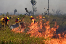 Des pompiers luttent contre un incendie à Santa Cruz, en Colombie