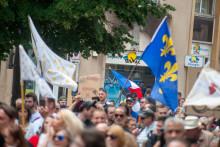 Des drapeaux souverainistes et royalistes pendant la manifestation contre le passe sanitaire à Metz