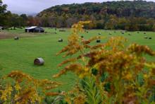 Un paysage de Virginie Occidentale, le 7 octobre 2021