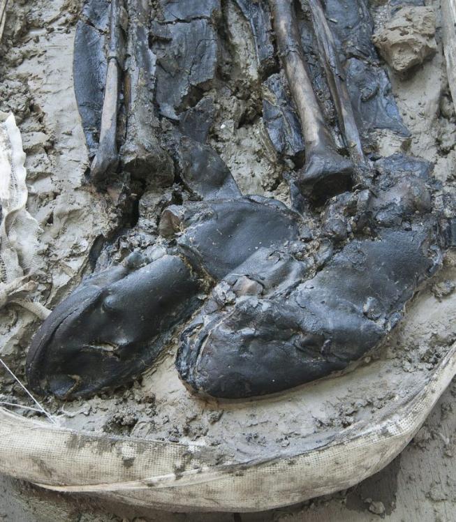Le squelette a été retrouvé avec ses bottes de cuir aux pieds