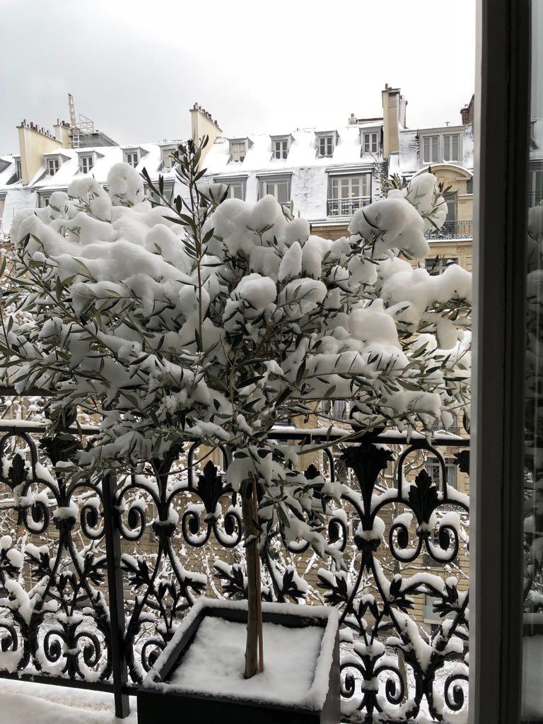 Paris sous la neige le 7 février 2018