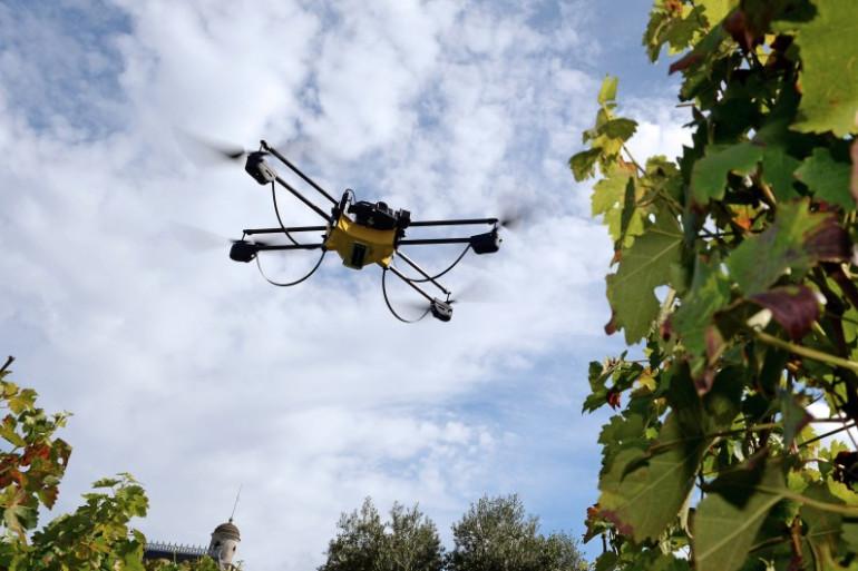 Un drone, le 9 septembre 2014, à Pessac. (archives)