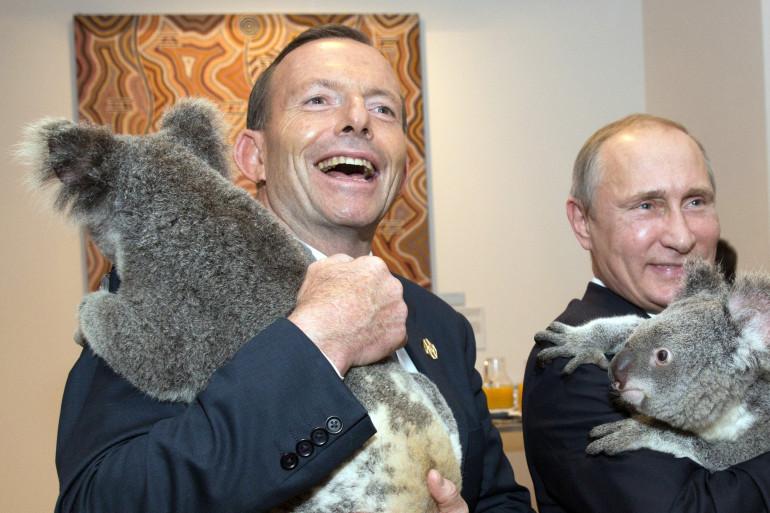Le président russe Valdimir Poutine et le Premier ministre australien Tony Abbott avec des koalas au G20
