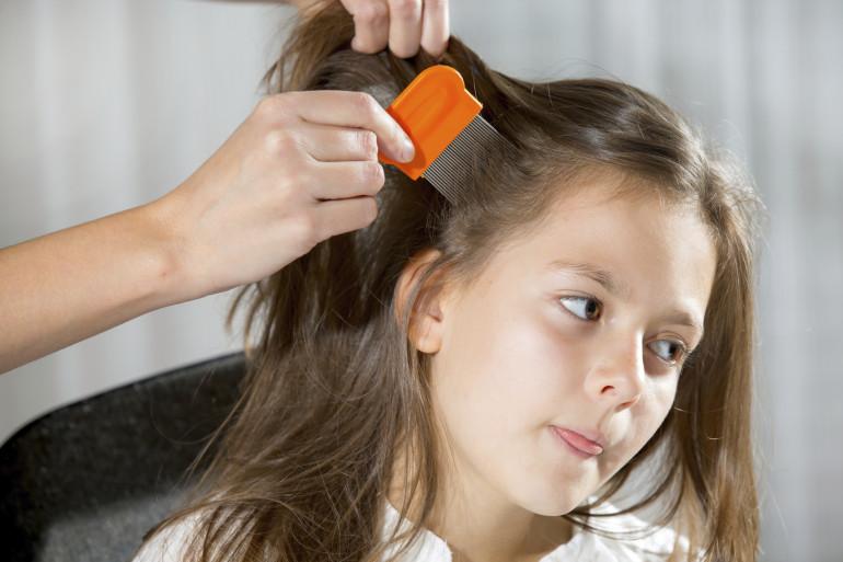 Une enfant se fait enlever les poux (image d'illustration)