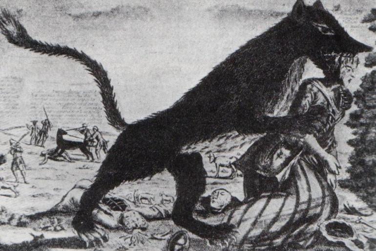 Gravure représentant la bête du Gévaudan