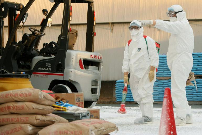 La désinfection d'un poulailler suspecté de grippe aviaire, au Japon, le 26 janvier 2011 (archives).