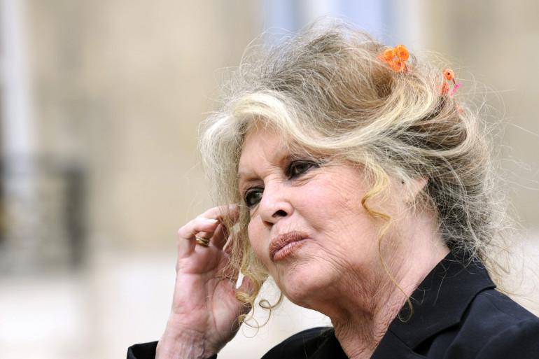 Brigitte Bardot à l'Élysée, le 27 septembre 2007.