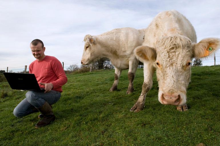 Sylvain Frobert, ici le 19 décembre, est éleveur de vaches allaitantes à Saint-Prix (Val-d'Oise).