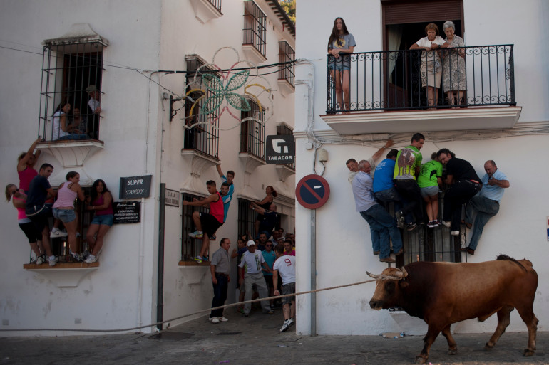 Un taureau dans les rues de Grazalema, en Espagne, lors d'un festival, le 21 juillet 2014. (Illustration)