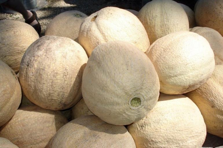 Des melons du Quercy sur un marché