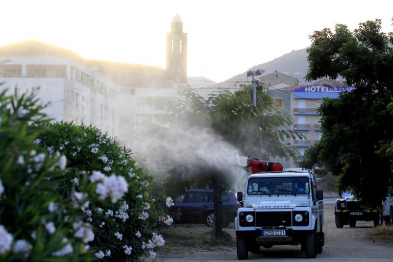 Des services spéciaux pulvérisent des produits après avoir découvert la bactérie Xylella Fastidiosa à Propriano, en Corse, le 31 juillet 2015 (illustration).