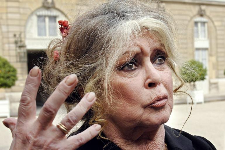 Brigitte Bardot en 2007 (archive).