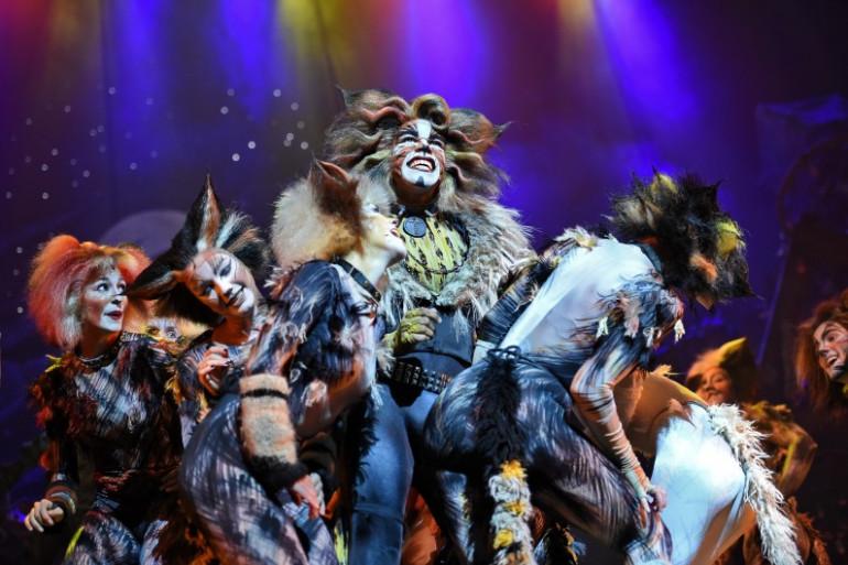 """""""Cats"""" lors d'une représentation à New York en janvier 2015"""